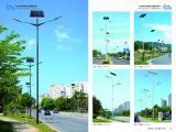 新农村太阳能路灯6米30W