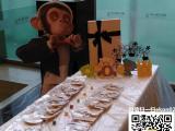 手工陶艺珍珠泥创意相框DIY暖场活动