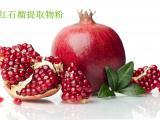 红石榴果粉 红石榴果提取物 红石榴果浓缩汁粉