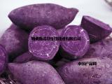 紫薯粉 紫薯膳食纤维 紫薯纯粉
