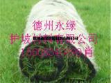 抗冲植草毯 厂家直销  绿化景观植草毯新品热销
