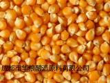 求购玉米高粱小麦碎米大米等酿造原料