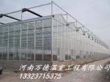 万德温室 温室大棚 玻璃温室
