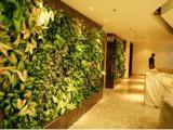 植物墙,仿真树,绿雕