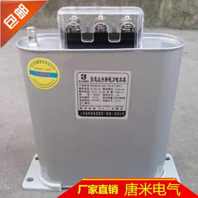 威斯康电力电容 自愈式低电压并联电容器BSMJ0.45-40-3电力电容器