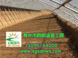 温室建设   全钢架花梁温室大棚   寿光市启航温室
