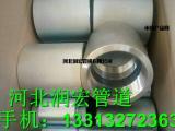 润宏供应碳钢A105锻制镀锌双螺口管箍价格