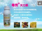 果树缺素症怎么办 防治果树缺素症专用叶面肥 保花保果叶面肥