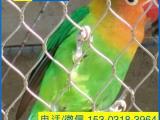 植物园观赏用不锈钢丝绳防鸟网