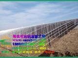 日光温室   有立柱日光温室   寿光市启航温室