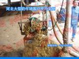 一体化牛粪脱水机价位/处理/甩干机械