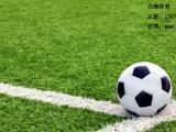 专业策划足球场,优质足球场规划,专业团队施工!