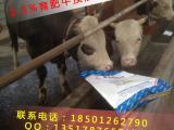 牛饲料价格/育肥牛饲料配方/牛是什么饲料长的快