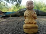 黄杨木雕佛陀分身 雷音传佛木品-www.leiyin.cf