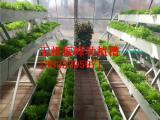 无土栽培种植槽生产厂家