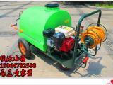 园林汽油喷雾机,农药果园喷雾机,高压喷雾器厂家热卖