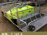 世昌畜牧专卖母猪分娩产床加重杠梁腿价格