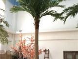 广州仿真椰子树 棕榈树大型 室内外装饰工程公司