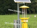 太阳能杀虫灯华坪无公害技术新产品永胜专业农用太阳能杀虫灯厂家