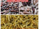画眉食/观赏鸟食/龟食/龟粮五谷虫干/蝇蛆干/香脆食料
