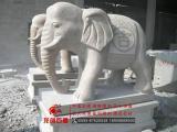 汉白玉大象 惠安青石石雕大象 石材大象雕刻