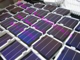 太阳能电池片砚山单晶硅太阳能电池片麻栗品质光伏电池片高效节能