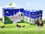 德国进口牛奶饮品大礼包 莱茵堡全脂/低脂牛奶礼盒装