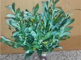 仿真橄榄树桃树批发 橄榄树枝 假果树 仿真橄