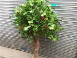 广州仿真咖啡树 假咖啡树 LED仿真咖啡树果