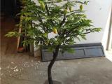仿真柠檬树盆栽 批发仿真柠檬树公