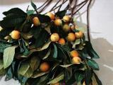 仿真枇杷树桃树批发 枇杷树枝 假果树 仿真枇杷树枝桃