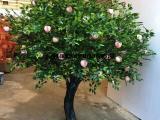 仿真桃树制作过程 仿真桃树价格 大型桃树