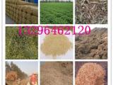 羊用草粉生产厂家