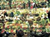 西乡县某农产品综合市场建设项目立项报告代写