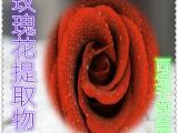 玫瑰花提取物 玫瑰花浓缩粉 玫瑰花浸膏粉 玫瑰花粉