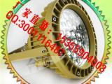 厂家直销TCD510 油田作业灯 30W防爆灯led防腐防尘