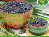 黑米批发非东北优质洋县黑米厂家批发量大价格从优