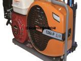 加拿大进口ECOWELL充气泵,呼吸空气压缩机填充泵