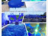 鲸鱼岛海洋球乐园出租、租赁、展览