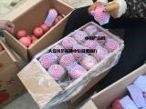 冷库膜袋红富士苹果价格,冷库纸袋红富士苹果批发价格