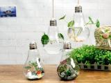 梦之雨 透明玻璃微景观 悬挂灯泡 透明水培花瓶 厂家直销