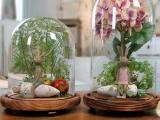梦之雨 微景观玻璃瓶 透明玻璃罩 厂家批发