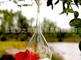 梦之雨 微景观生态瓶 多肉植物玻璃花瓶 可悬挂吊瓶 厂家批发