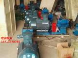 防爆整机-80YHCB-60圆弧齿轮泵-流量60立方油泵