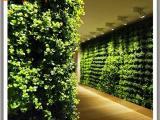 仿真植物墙报价