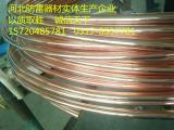 铜包钢圆线专业生产厂家定不负您所托
