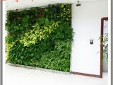 仿真植物墙设计
