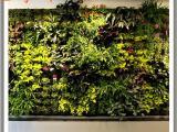 仿真植物墙有哪些优点