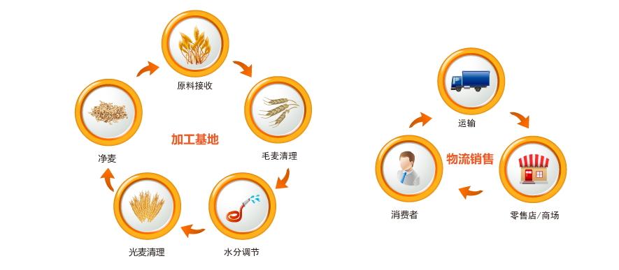 红枣二维码质量追溯系统开发公司