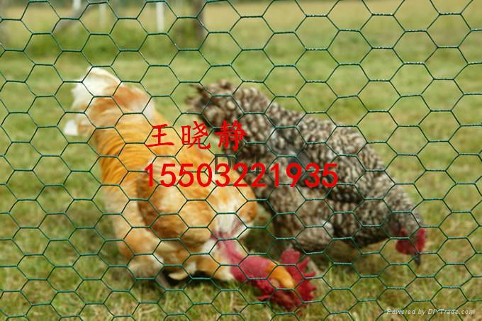 生态养殖防护六角石笼网价格